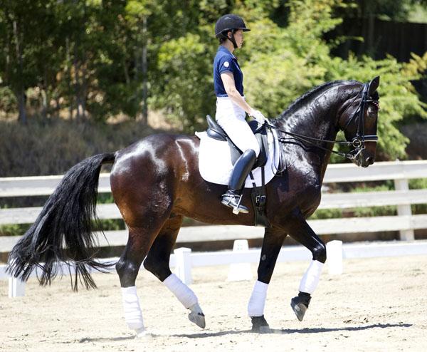 Akiko Yamazaki Rides Ravel As Equine Therapy Celebrity