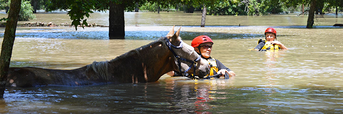 The U.S. Equestrian Federation reported Tuesday that its Equine Disaster Relief Fund has received more than $400,000 in donations and pledges, ...