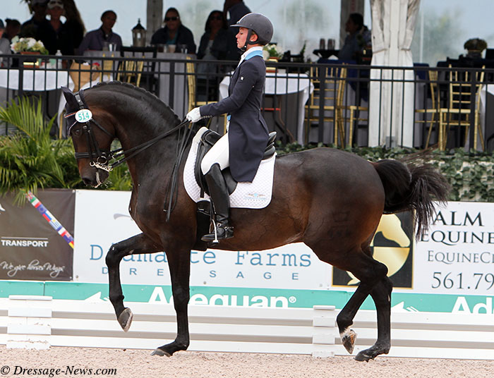 Usa Nations Cup Team Horse Destiny Competed By Devon Kane