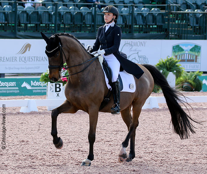 Elmegardens Marquis Competed By Georgia S Joanne Vaughan At Age 21