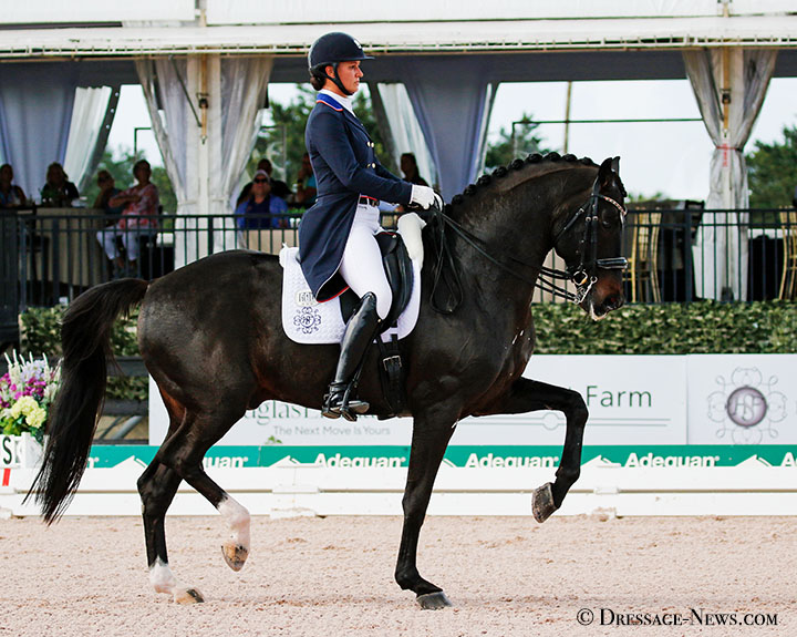Adrienne Lyle & Salvino Score 80% to Win Wellington CDI4* Grand Prix, Only 3rd American Combo to Join 80% Club